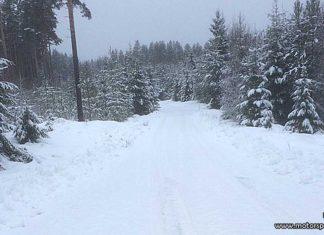 Senaste nytt inför Finnskogsvalsen